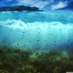 aquatic_life-wallpaper-1280x1024